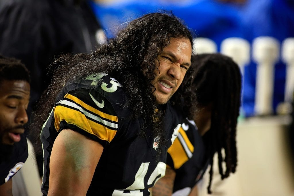 Troy Polamalu crazy insured hair