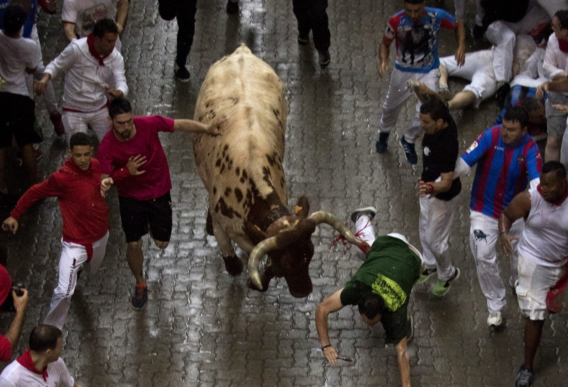 running of the bulls, spain, madrid