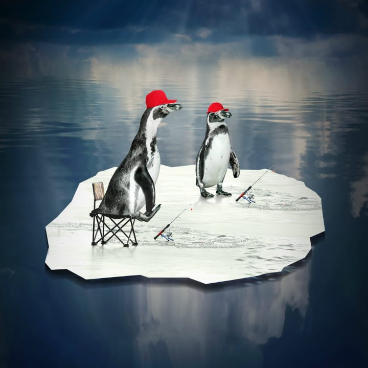 Penguins fishing
