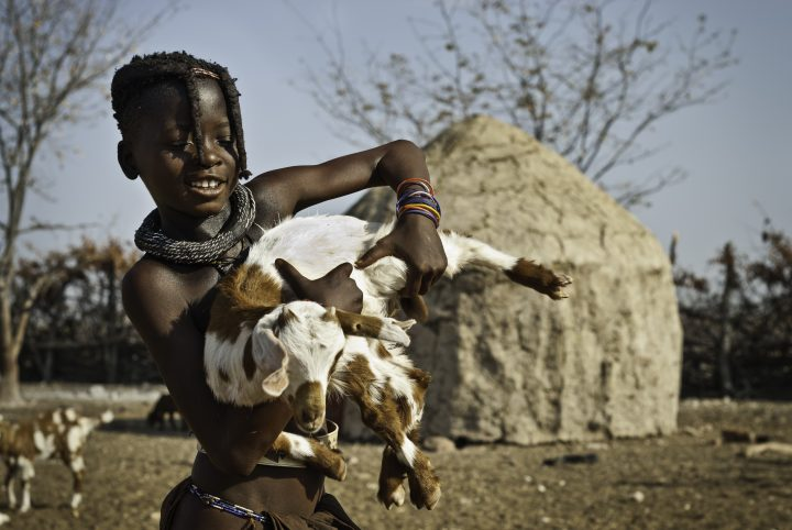 EPUPA FALLS, KUNENE, NAMIBIA - 2010/10/14: Himba girl with a goat in a village of mud huts. (Photo by Jorge Fernández/LightRocket via Getty Images)